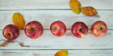 Leerkrachthandelen en leerlingkenmerken – hoogbegaafdheid